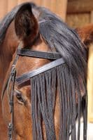 Browband Set 2 in 1